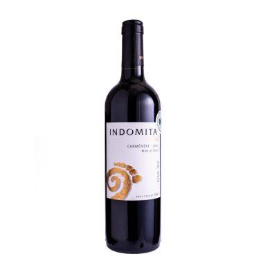 AG-Vinhos-img_4517-28